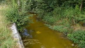 20. Juli Verschmutzung Bielbach
